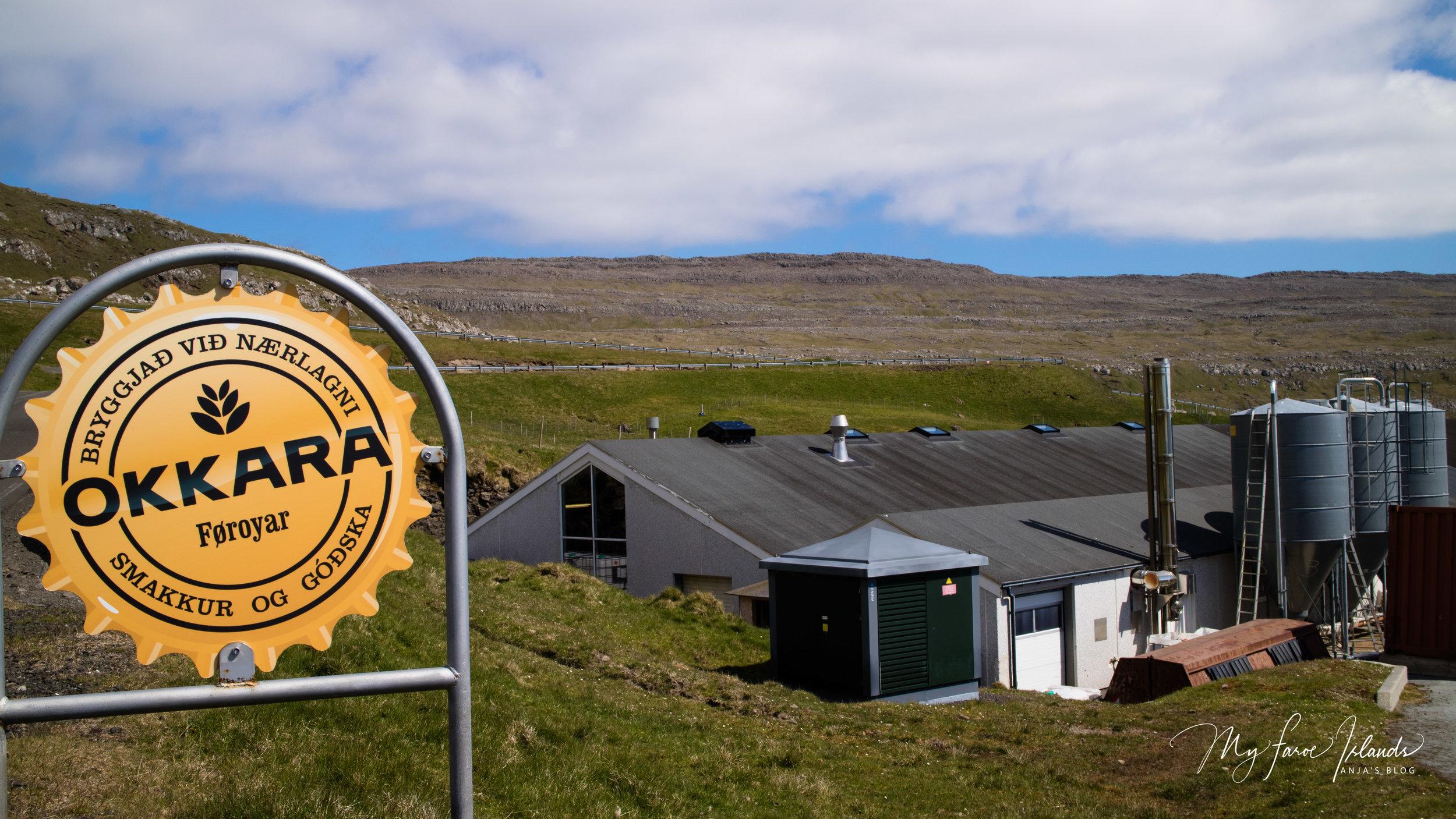 OKKARA Outside © My Faroe Islands, Anja Mazuhn  (1 von 1).jpg