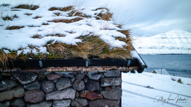 Roof+©+My+Faroe+Islands,+Anja+Mazuhn.jpeg