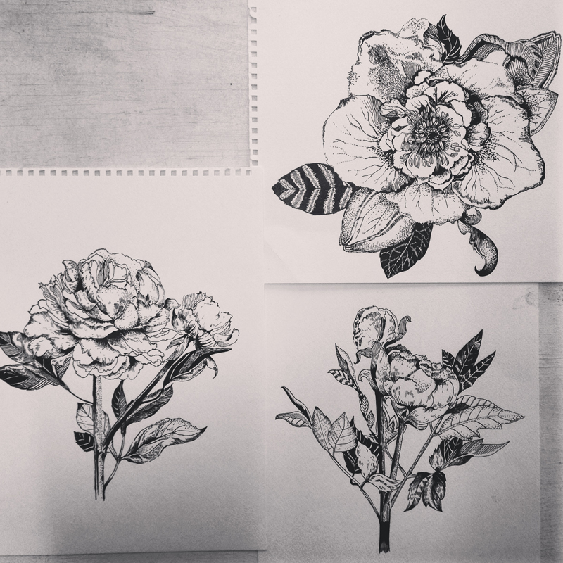 peony_collection