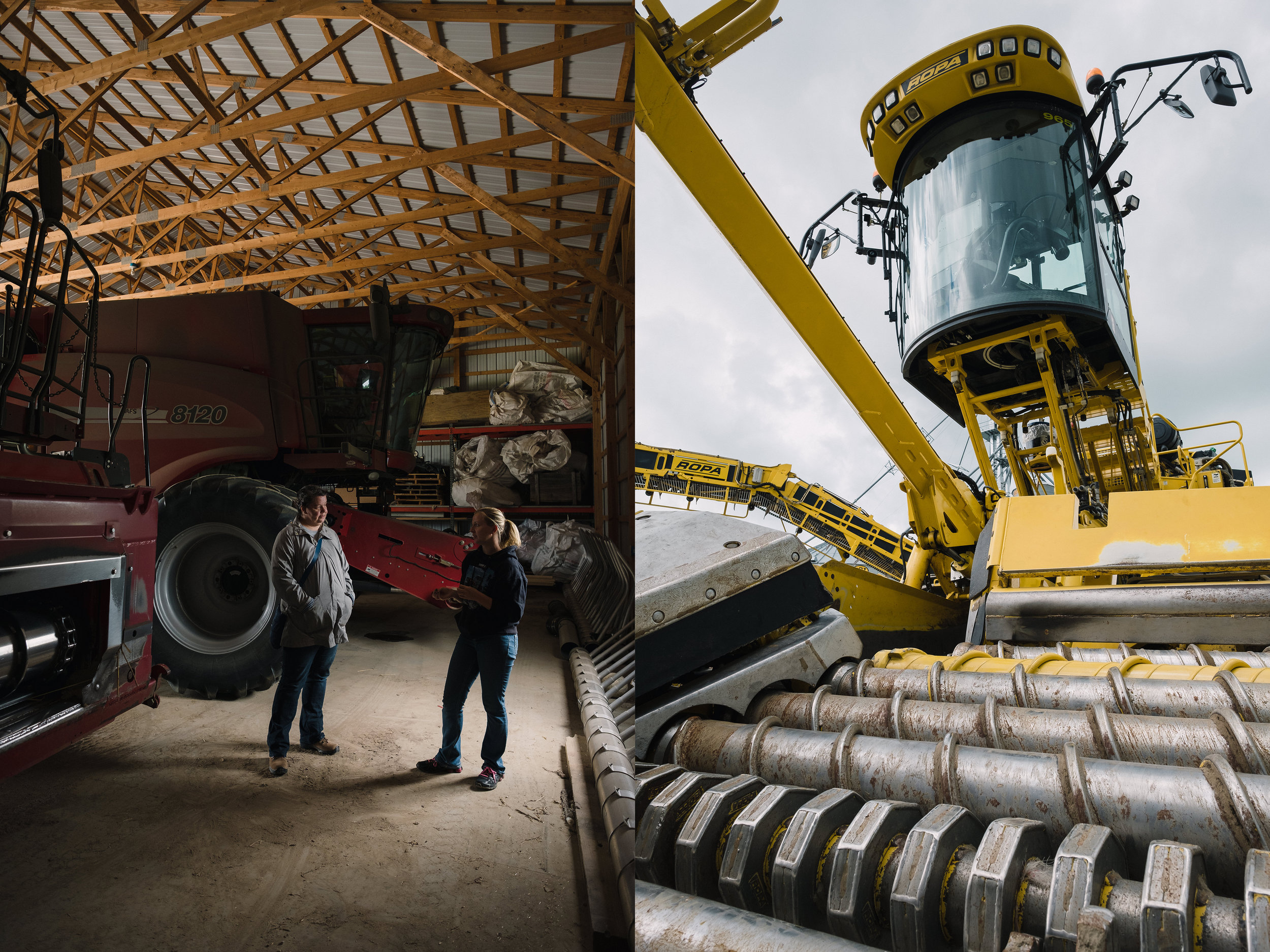 A brief tour of some of the farm equipment. Left: Combines. Right: A German-made Maus, designed for sugar beet harvesting.