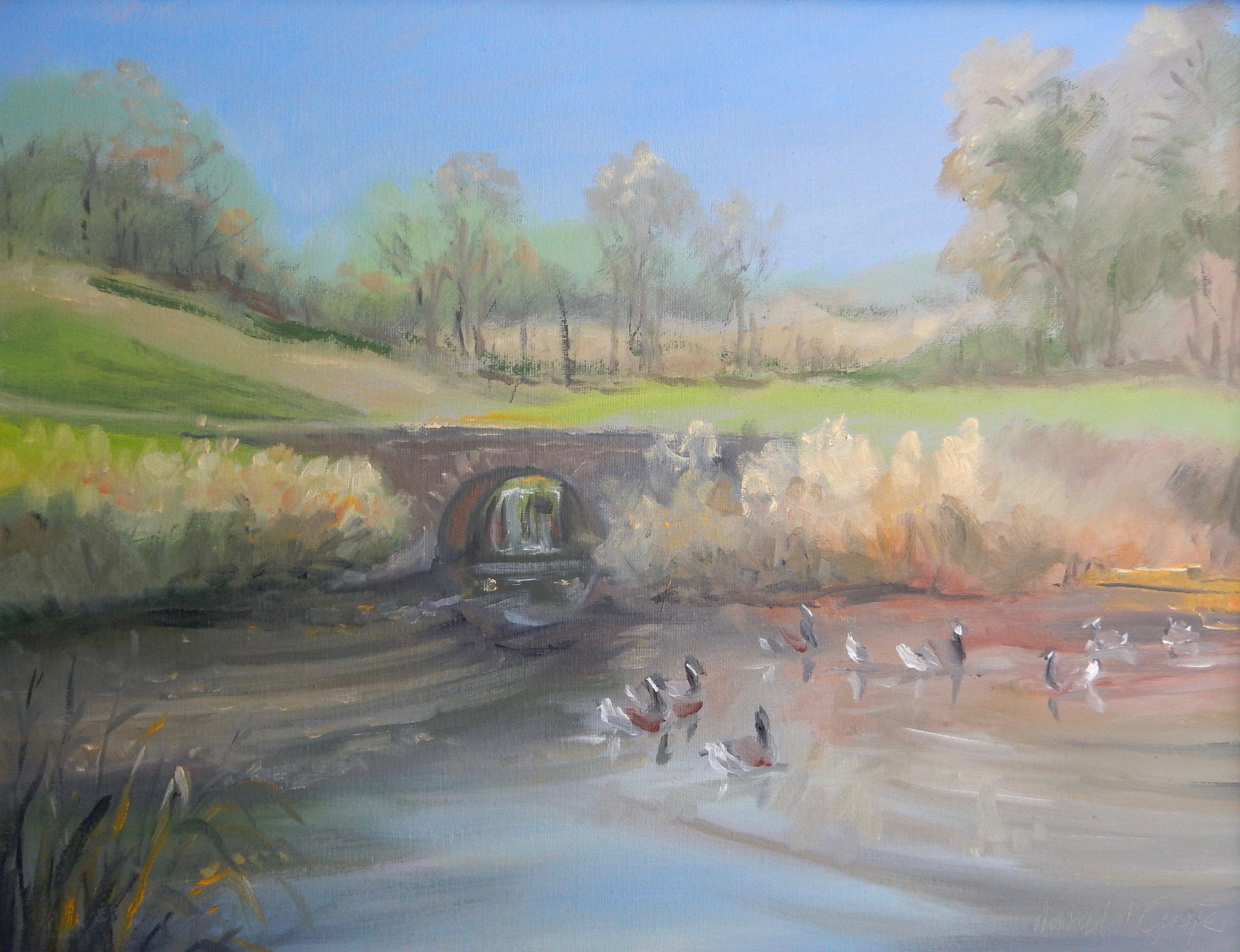 Grote DSCN6592 18x24 Duck Pond - Winterthur.jpg