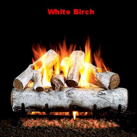 white birch.jpg