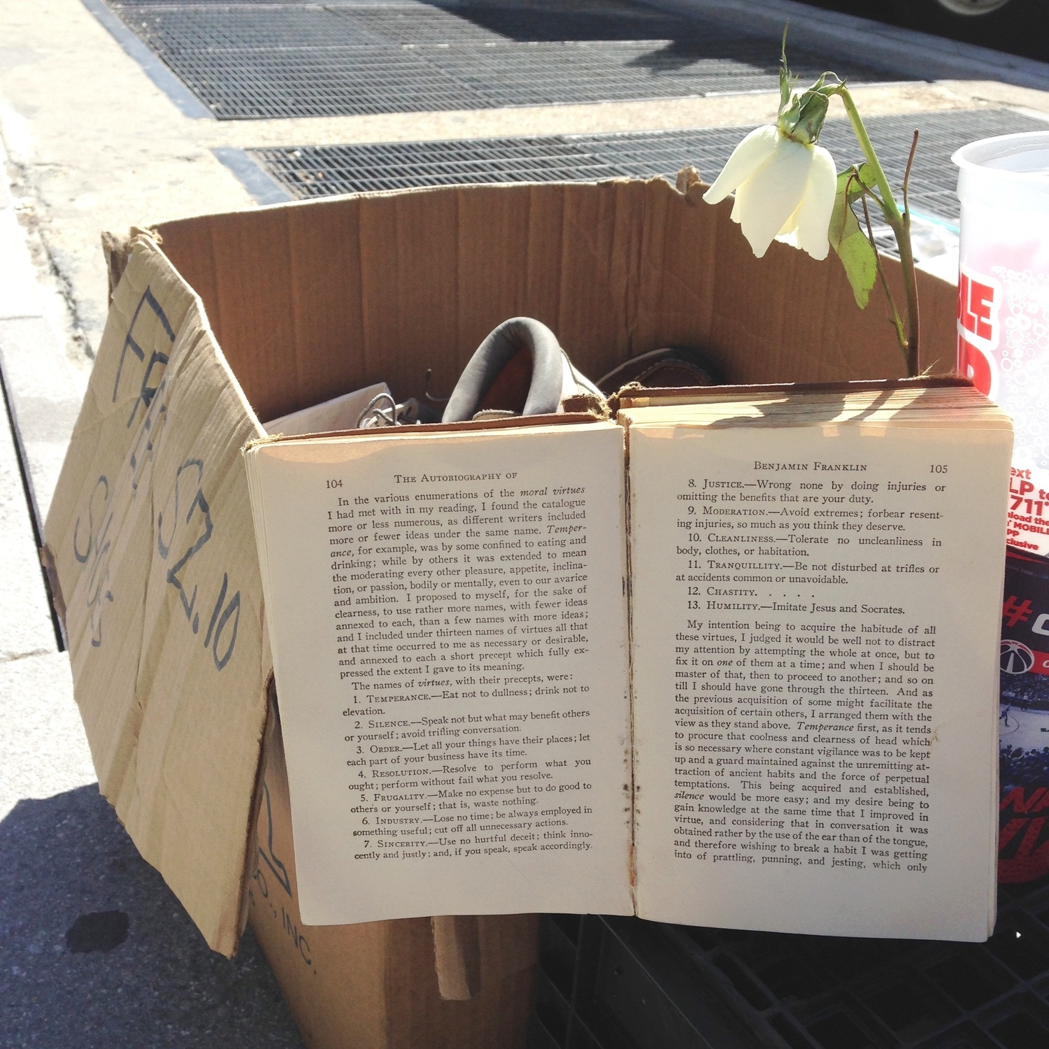 The Autobiography of Benjamin Franklin, a wilting rose, and free sz 10 shoes