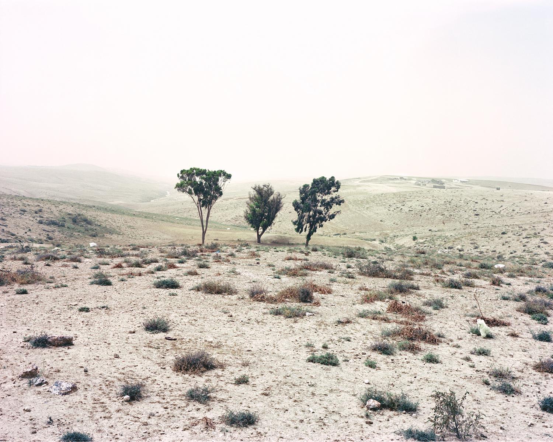 Untitled, Road 316, 2013 [3].jpg
