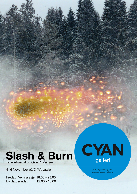 slash and burn poster.jpg