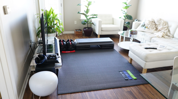 at home gym idea living room.jpg