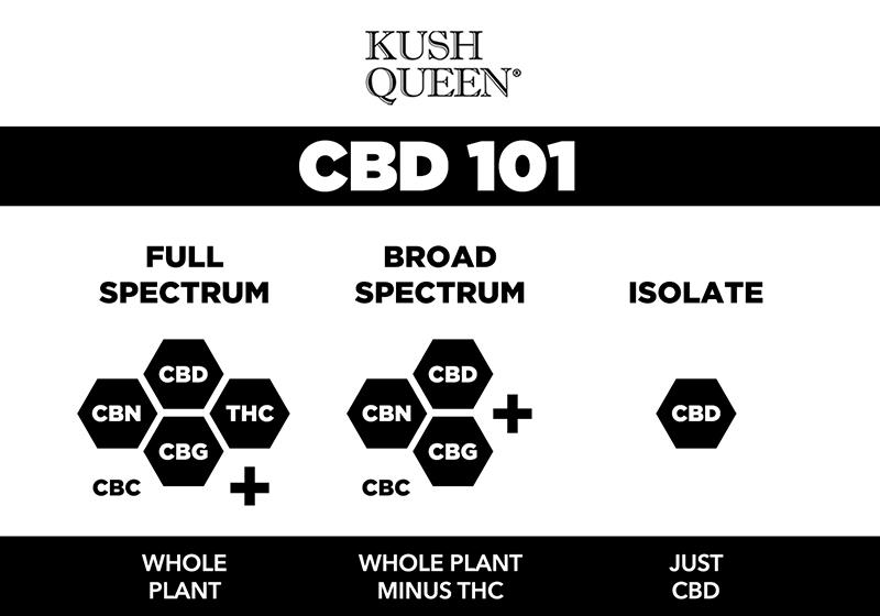 cbd-full-spectrum-infographic.jpg