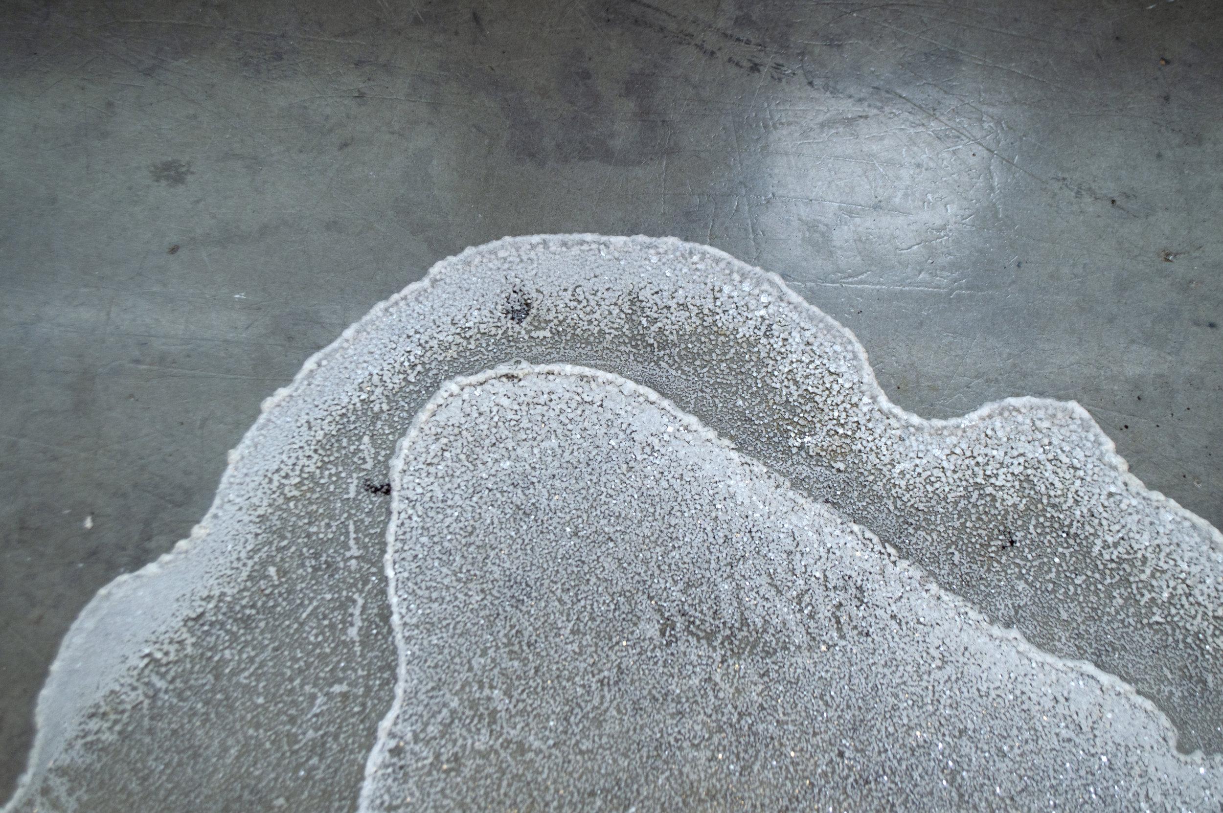 Taxidermy   2018, Earth, salt, glass, steel, water, vinyl coordinates