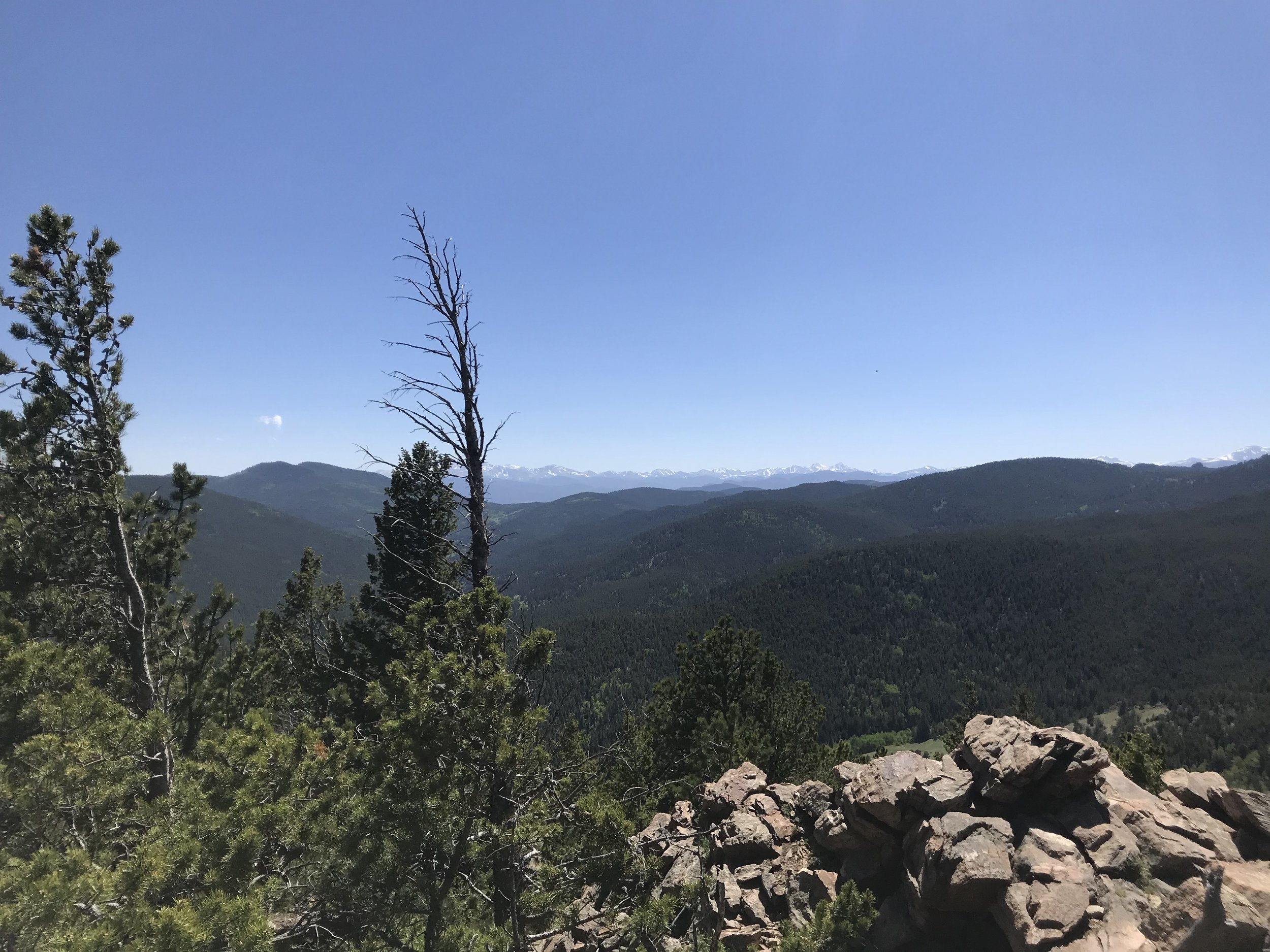 Top of Windy Peak!