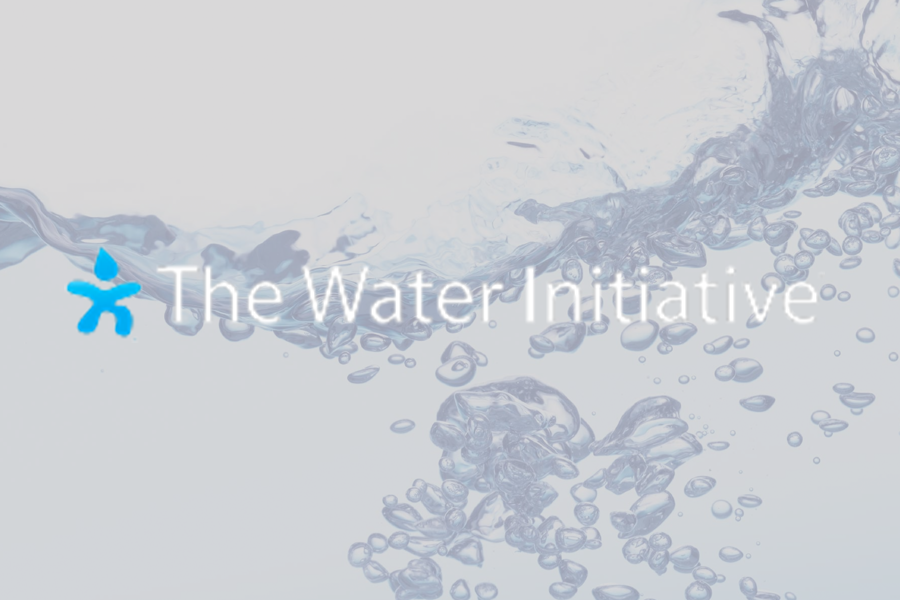 The Water Initiative<strong>Helping deliver safe water consumption globally</strong>