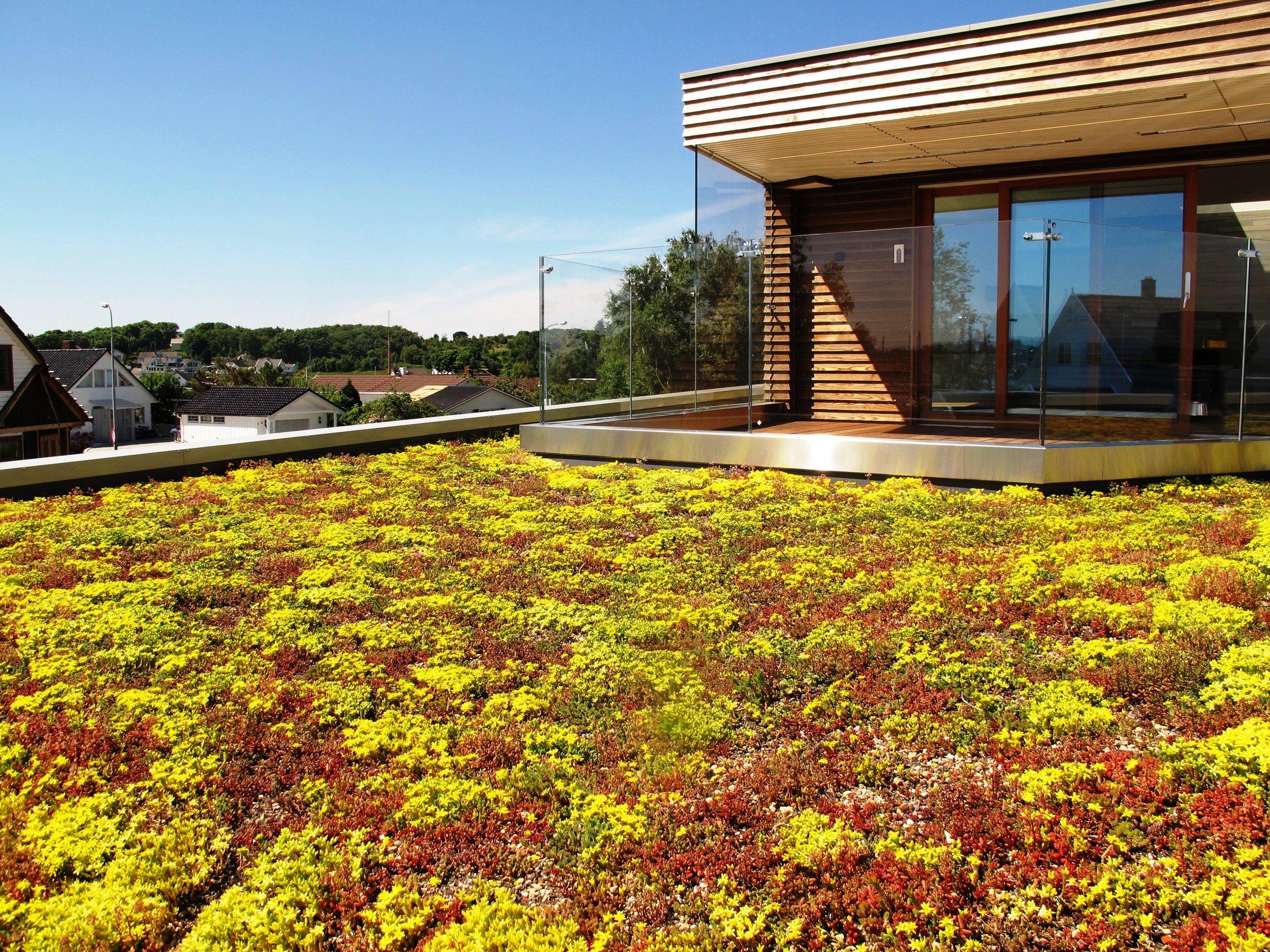 Urbane uterom kan bygges som vakre, skjermede takhager. Dette hever trivselen, forbedrer miljøet og fordrøyer overvann.
