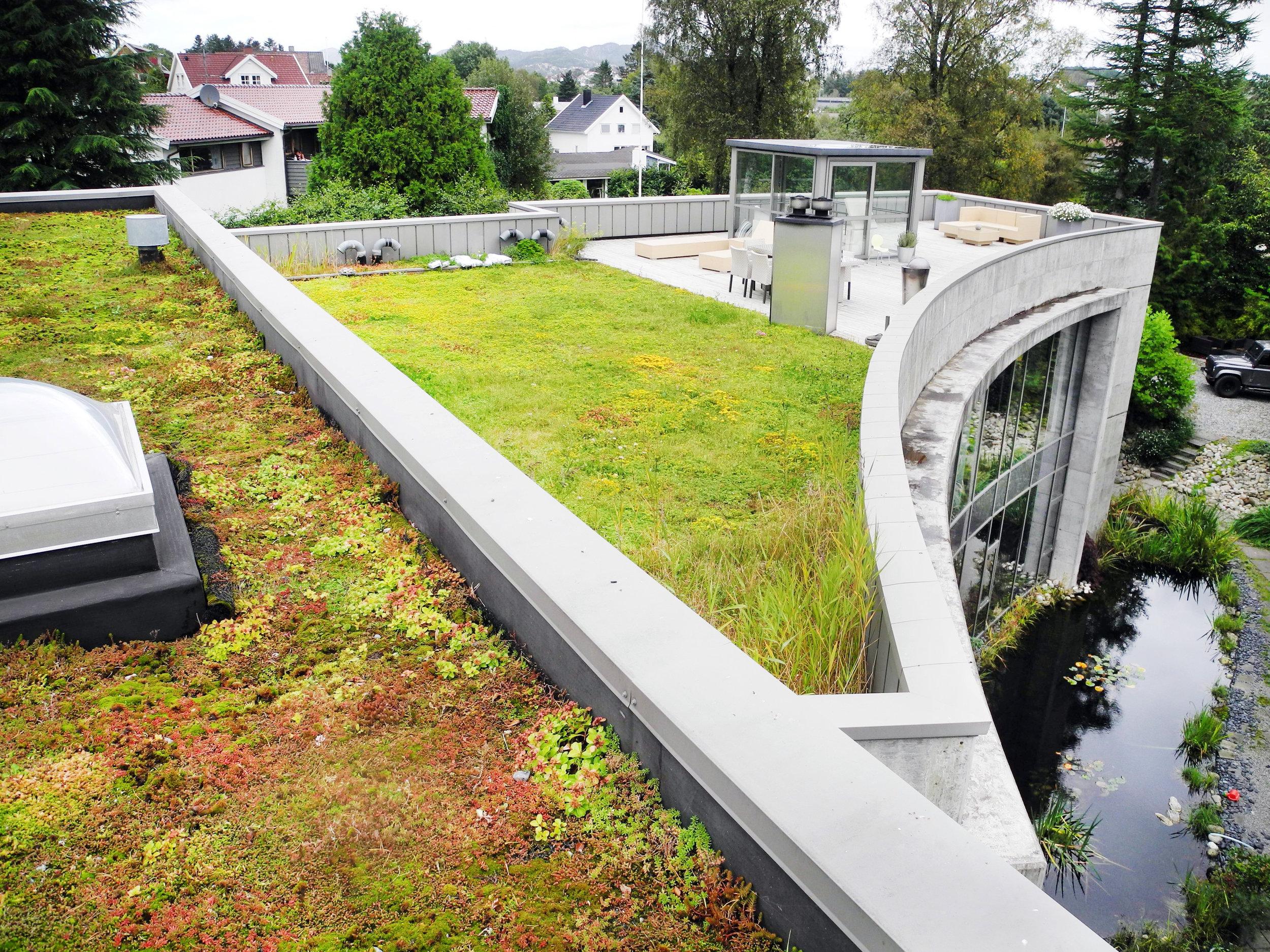 Taket er en verdifull del av eiendommen. Ved å bygge fordrøyende uterom, kan utbygger utløse en betydelig verdi.