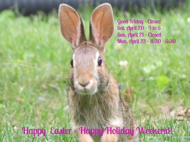 IMG_5244 Easter 2019.jpg