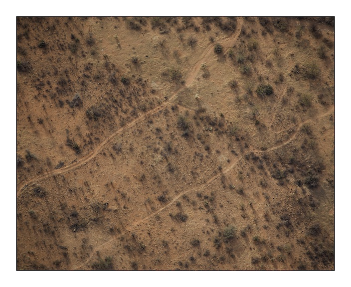 Traces of migration like these can be seen all over the desert. The track to the north is made by vehicles, probably United States Border Patrol and local farmers, the smaller track to the south and those that branch off from it will be used by cattle and migrants.