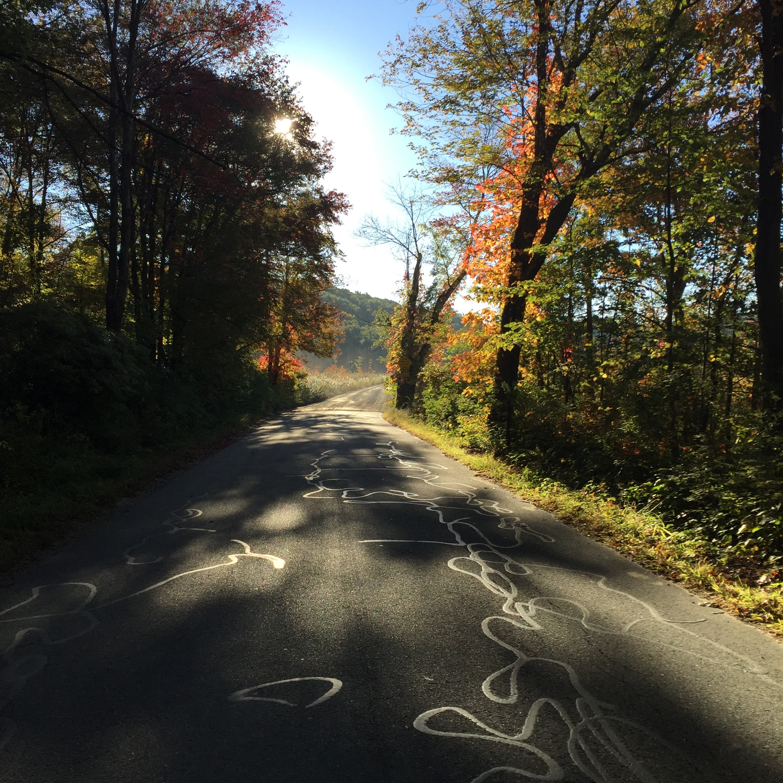 Maine backroads