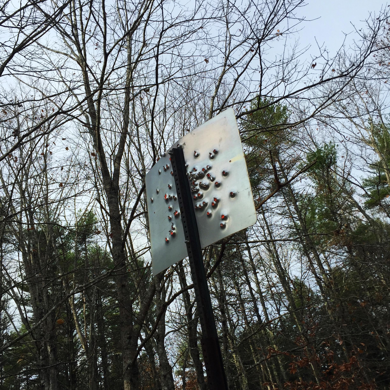 Road Rage. Maine