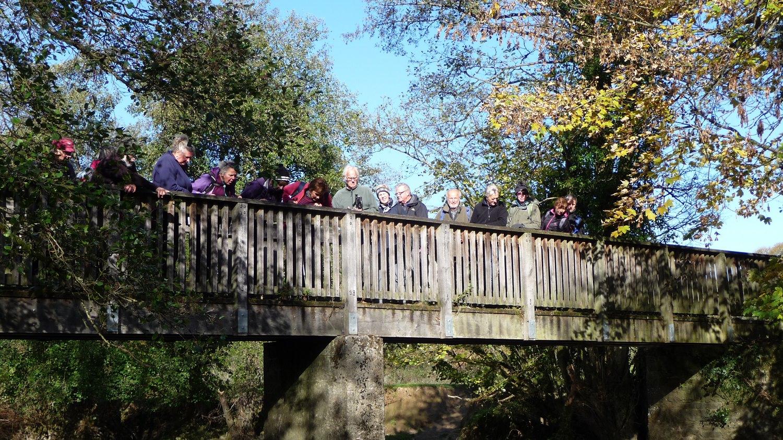 2018 Oct - Llandrindod Wells, Shaky Bridge