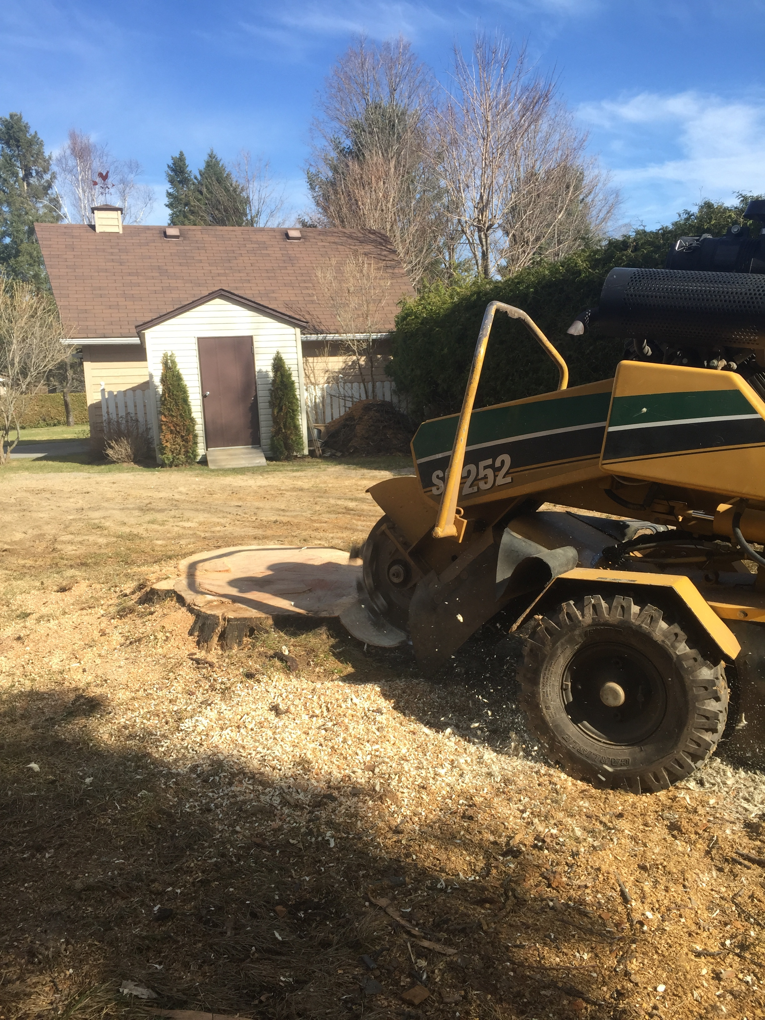 Stump Removal Barrie