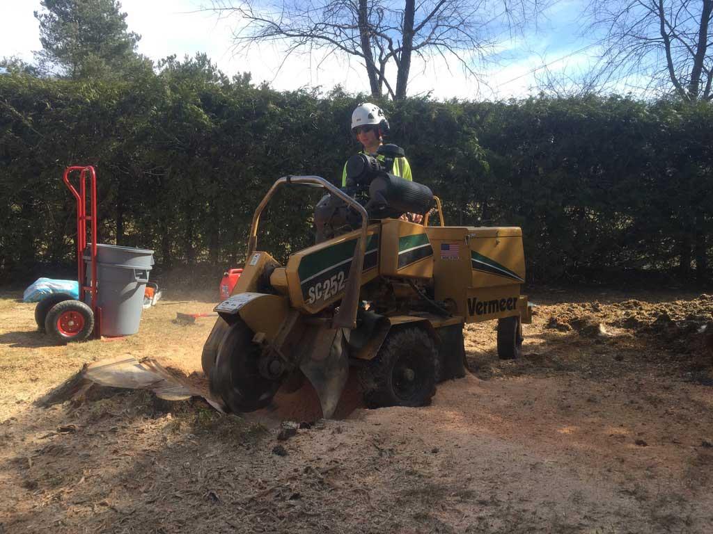 Stump-Grinding-Midhurst