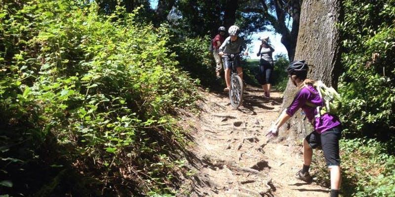 COACHESSANTA CRUZ & BAY AREA - Photo: Krista Gray Coaching