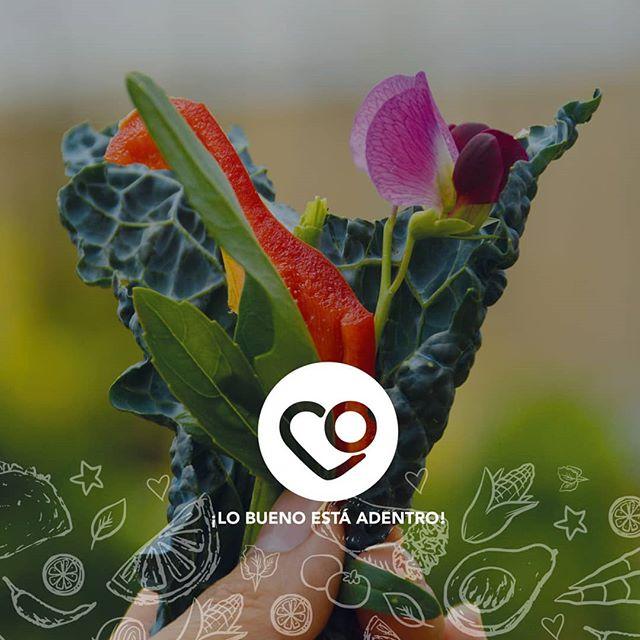 La naturaleza es sabia y maravillosa. ¡Aliméntate con ingredientesorgánicos,Tacorazón¡Lo bueno está adentro!  #antiguaguatemala #xela #corazón #tacorazon #comparteelbuenrollo #lobuenoestaadentro #tacos #burritos #tacosgt #burritosgt #organico #organicfood #familia #peques