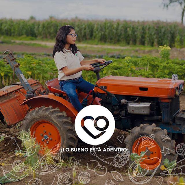 EnTacorazónalimentamos la esperanza de un mundo mejor y más justo paratod@s. Tacorazón, ¡Lo bueno está adentro! • #antiguaguatemala #xela #corazon #tacorazon #comparteelbuenrollo #lobuenoestaadentro #tacos #burritos #tacosgt #burritosgt #organico #organicfood #familia #Peques #unmundomejor