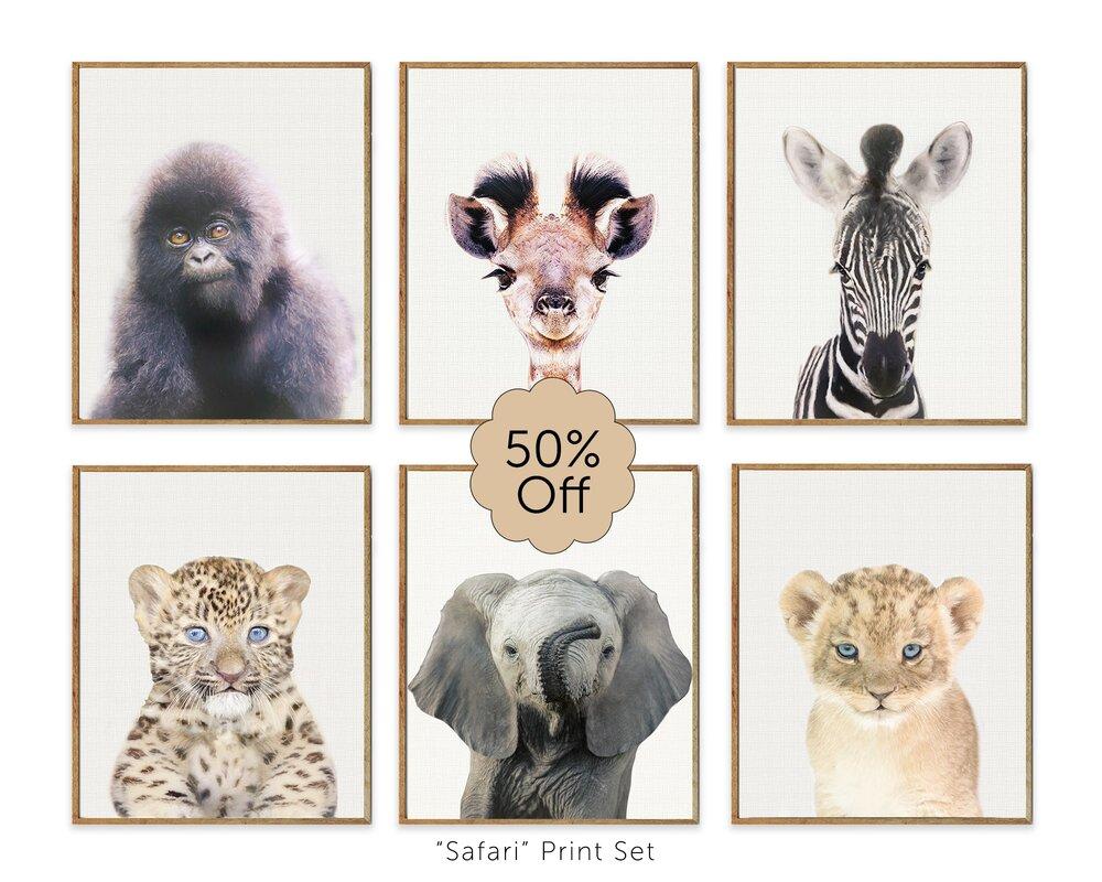 Safari Nursery Prints Set Of 6 Baby