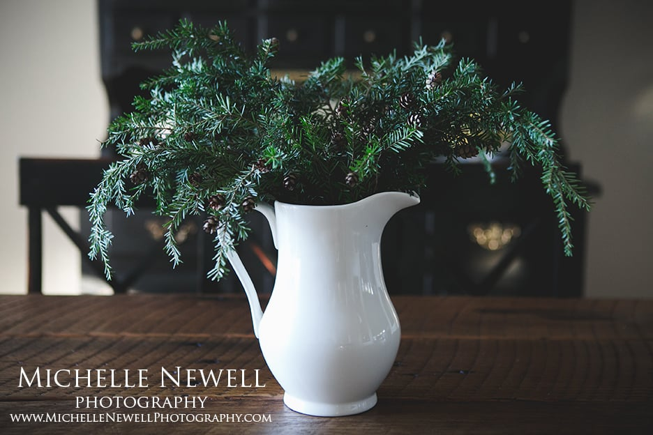 Michelle Newell Photography || Beauty Indoors