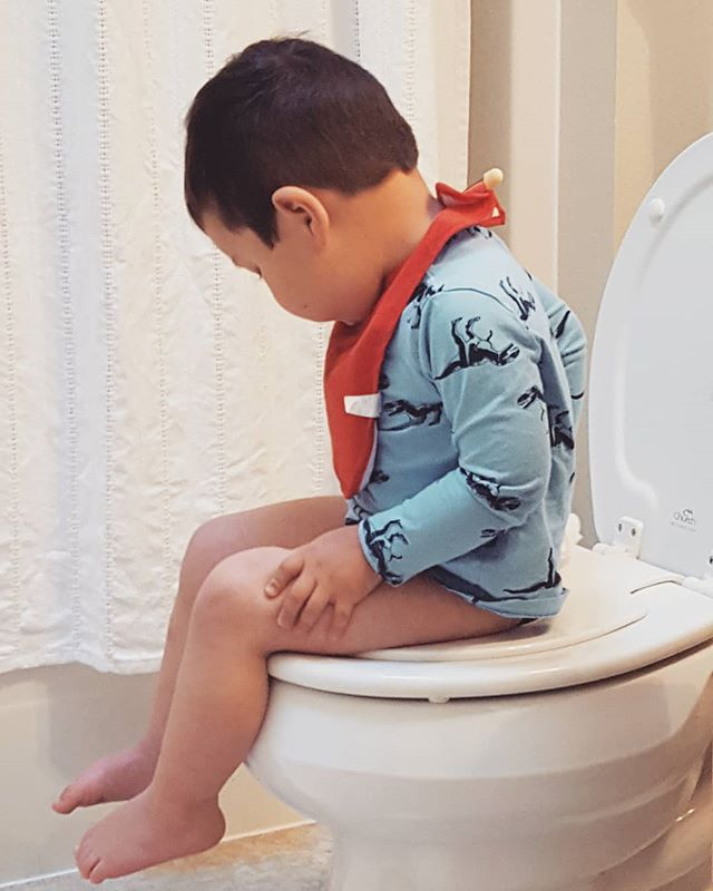 Someone just went potty, [albeit, not on purpose] on the toilet!!!! He wanted to sit on jie-jie's [older sister in Chinene] toilet and then we heard the tinkle tinkle of a magical sound. Hopefully this new found excitement will become a regular thing!!!