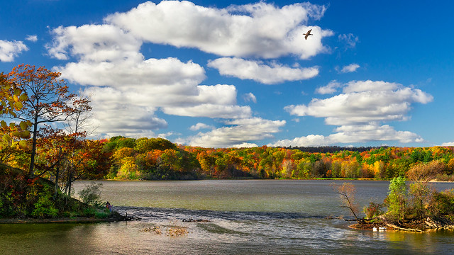 Princess Point in Westdale by  Jim Smith
