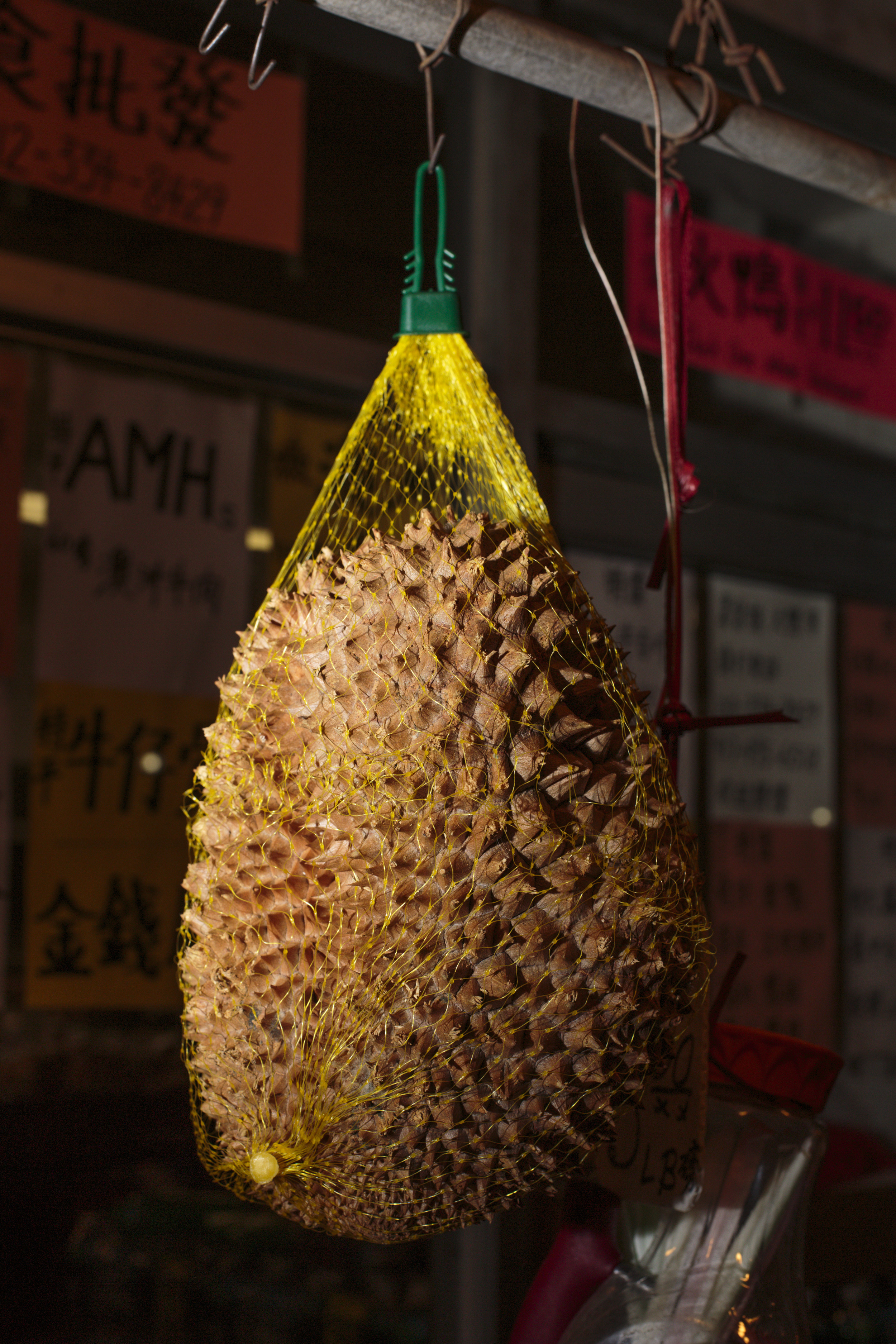 New York, USA - November 06, 2015: An exotic durian fruit is for sale in a Chinese market on the corner of Grand St and Eldridge St. The Chinese community in the Bowery, shares the Grand St with Little Saigon, the much smaller vietnamese equivalent of Chinatown. The Bowery, a street and neighborhood in Manhattan, once home for vagrants and a diversity of subcultures became the playground of artists, fancy bars and real-estate tycoons.
