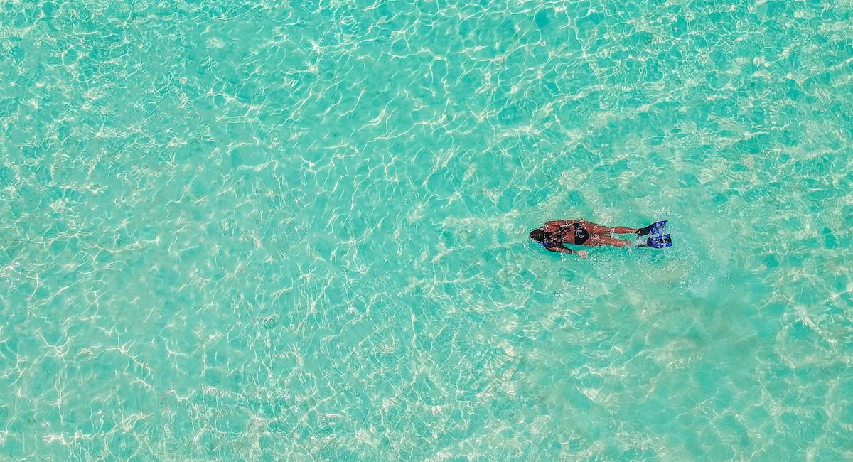 skylark water.jpg