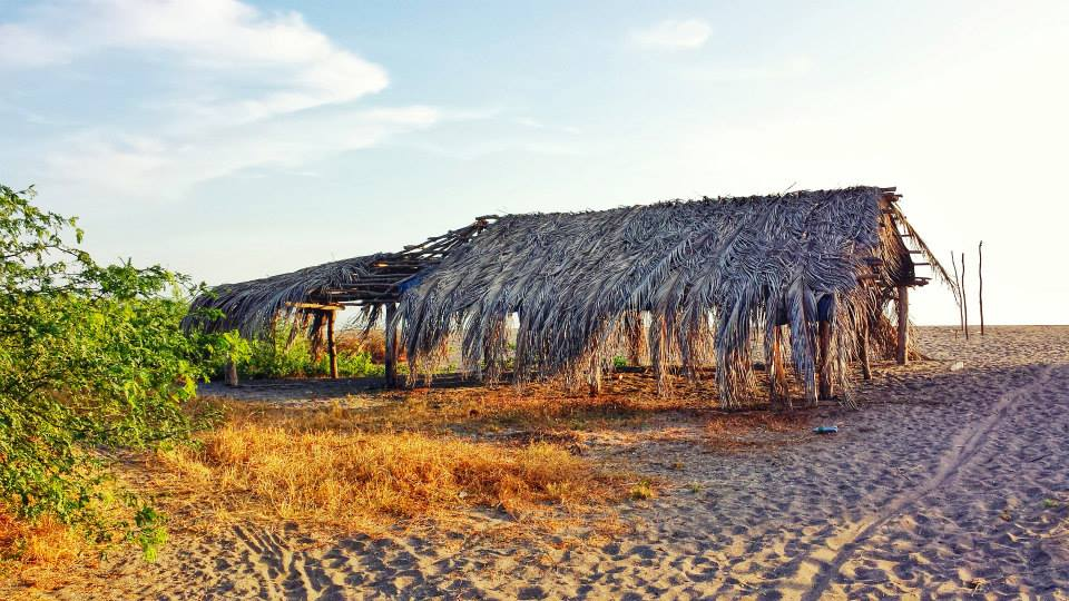 Isla Los Brasiles Nica Landscape.jpg