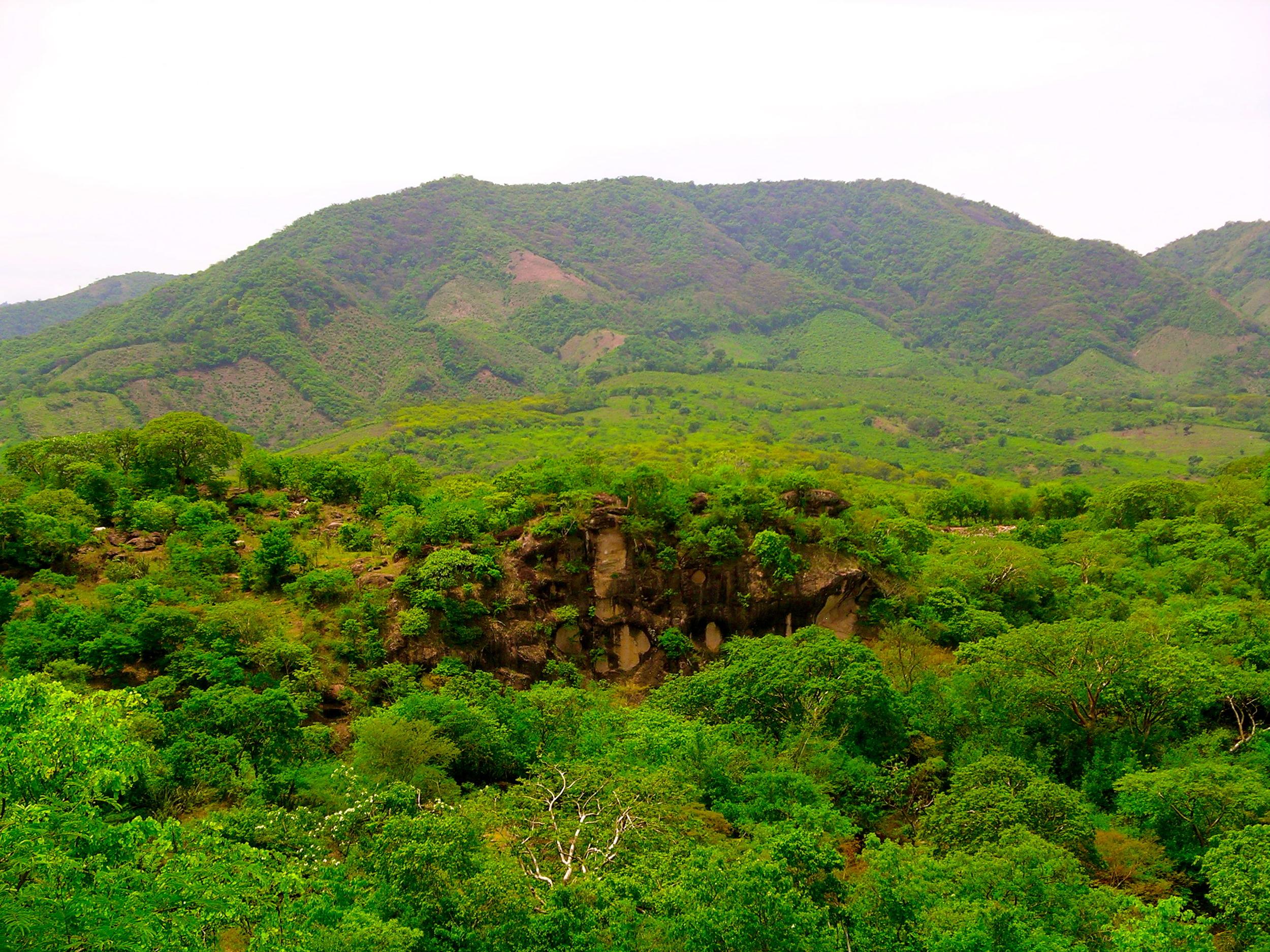 Gretchen Website Nicaragua Forest Landscape.JPG
