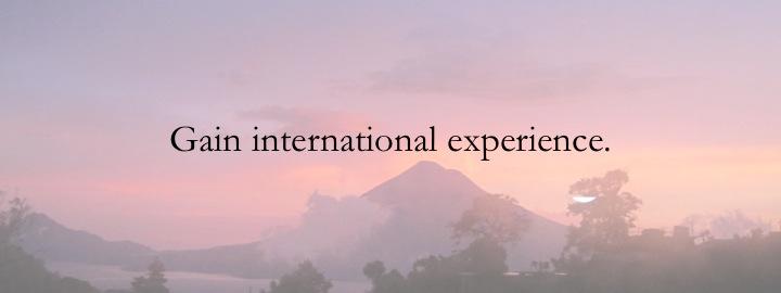 1 - Gain international experience.jpg