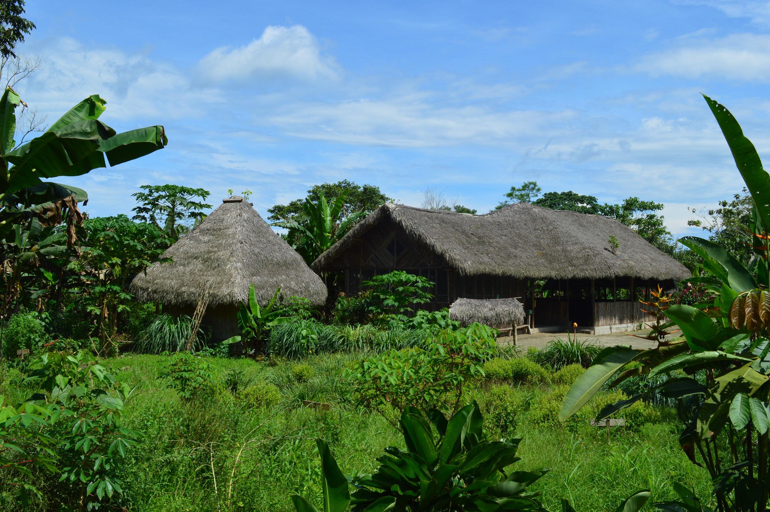 Ecuador Village Thatched Roof Landscape High Res (1).JPG
