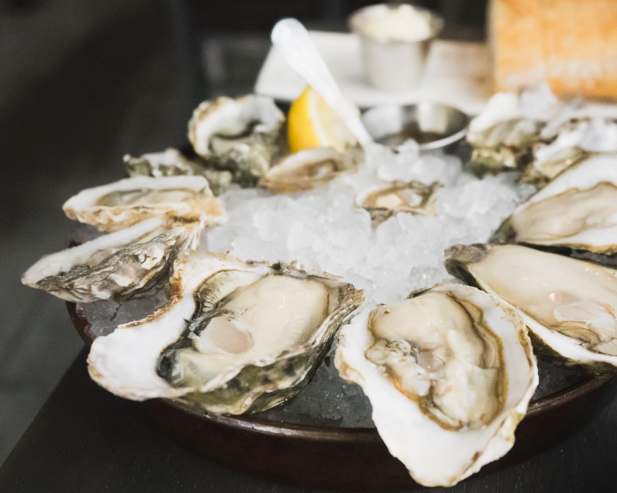 a dozen  oysters .