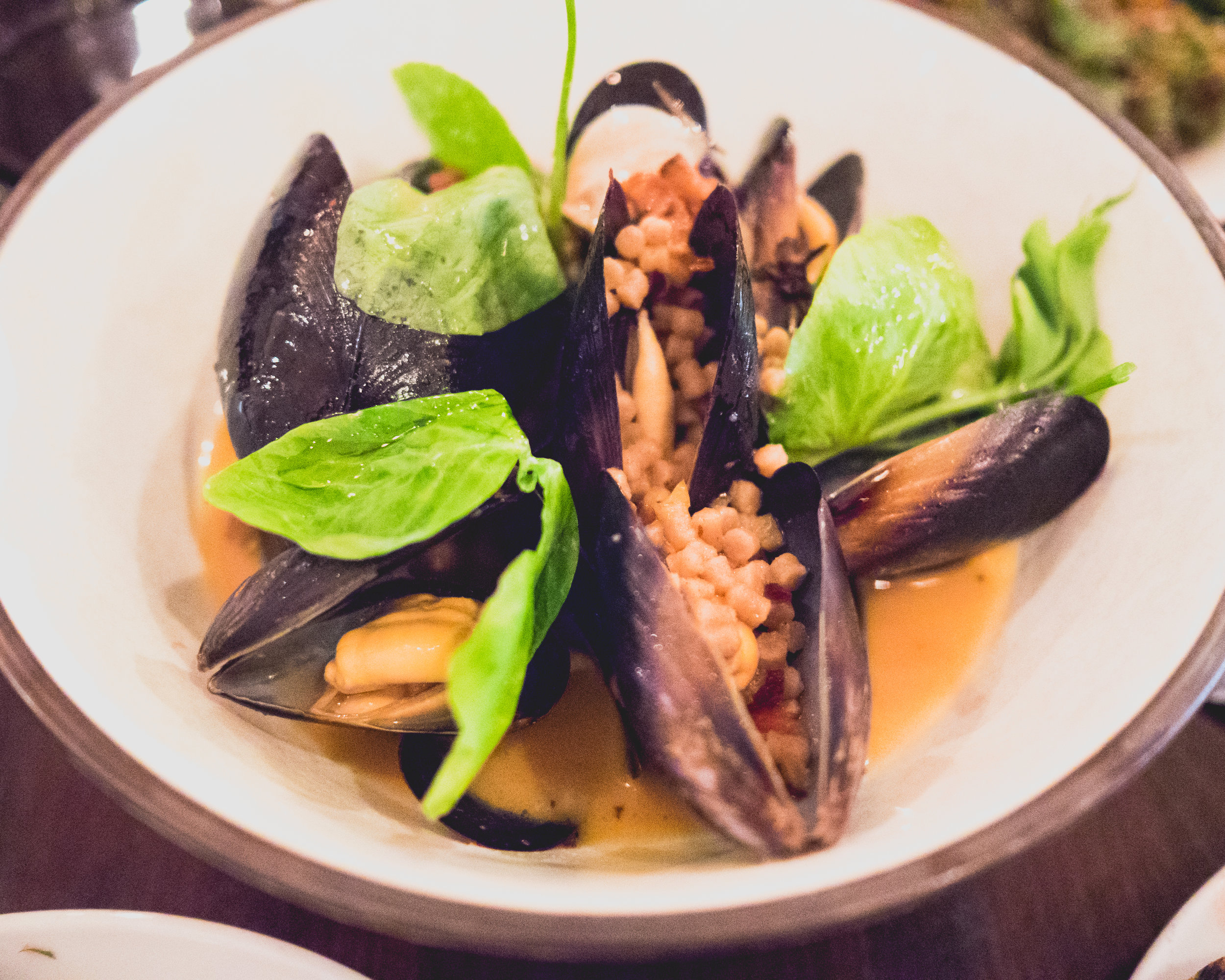hope ranch mussels  with guanciale, grandine, preserved meyer lemon.
