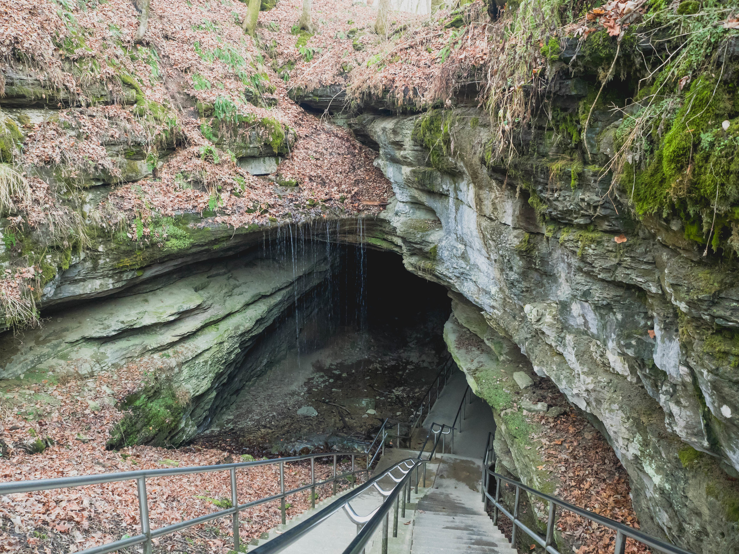 Mammoth Cave Historic Entrance.