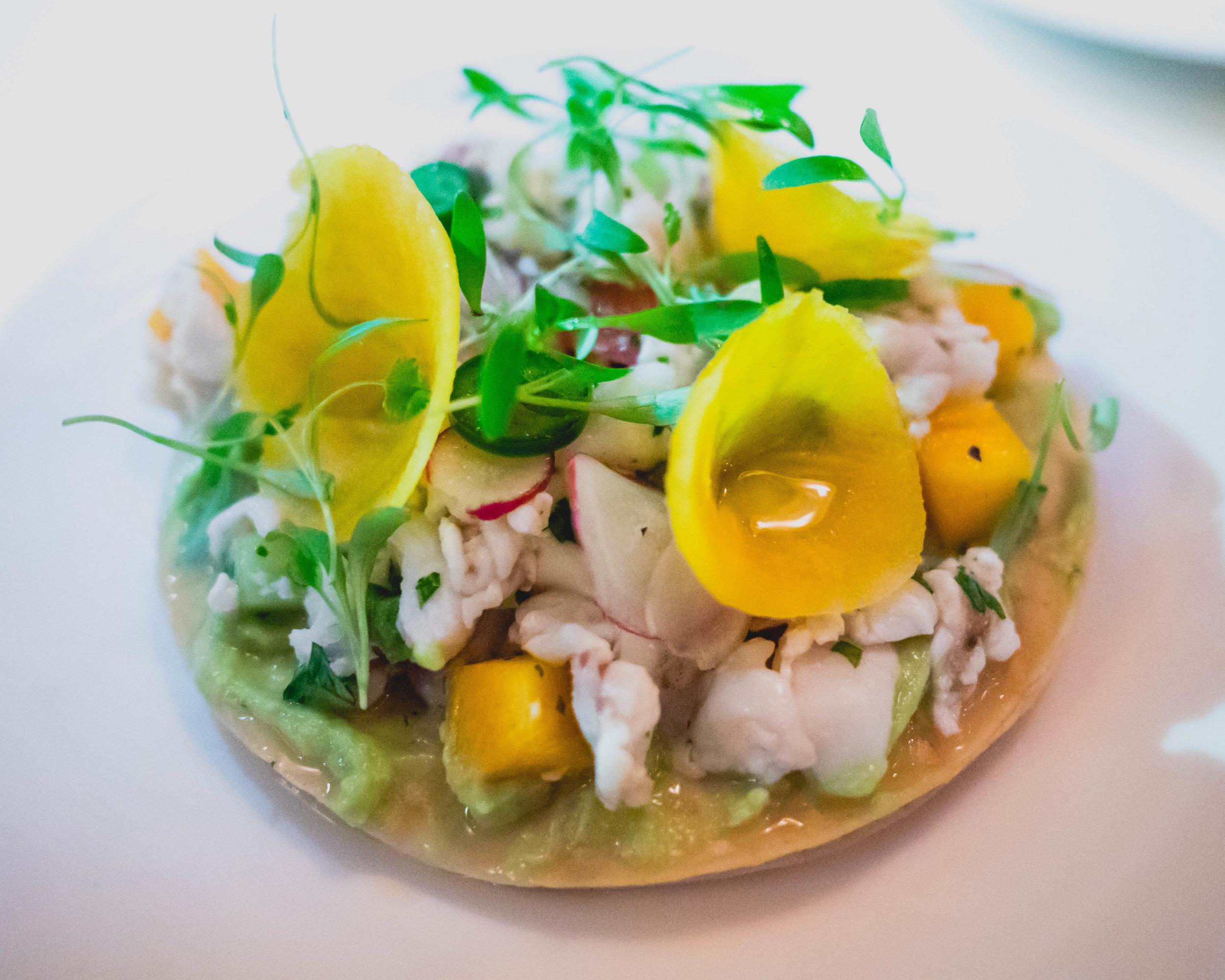 rockfish and shrimp ceviche  with persimmon, radish, serrano, cilantro, avocado, lime.