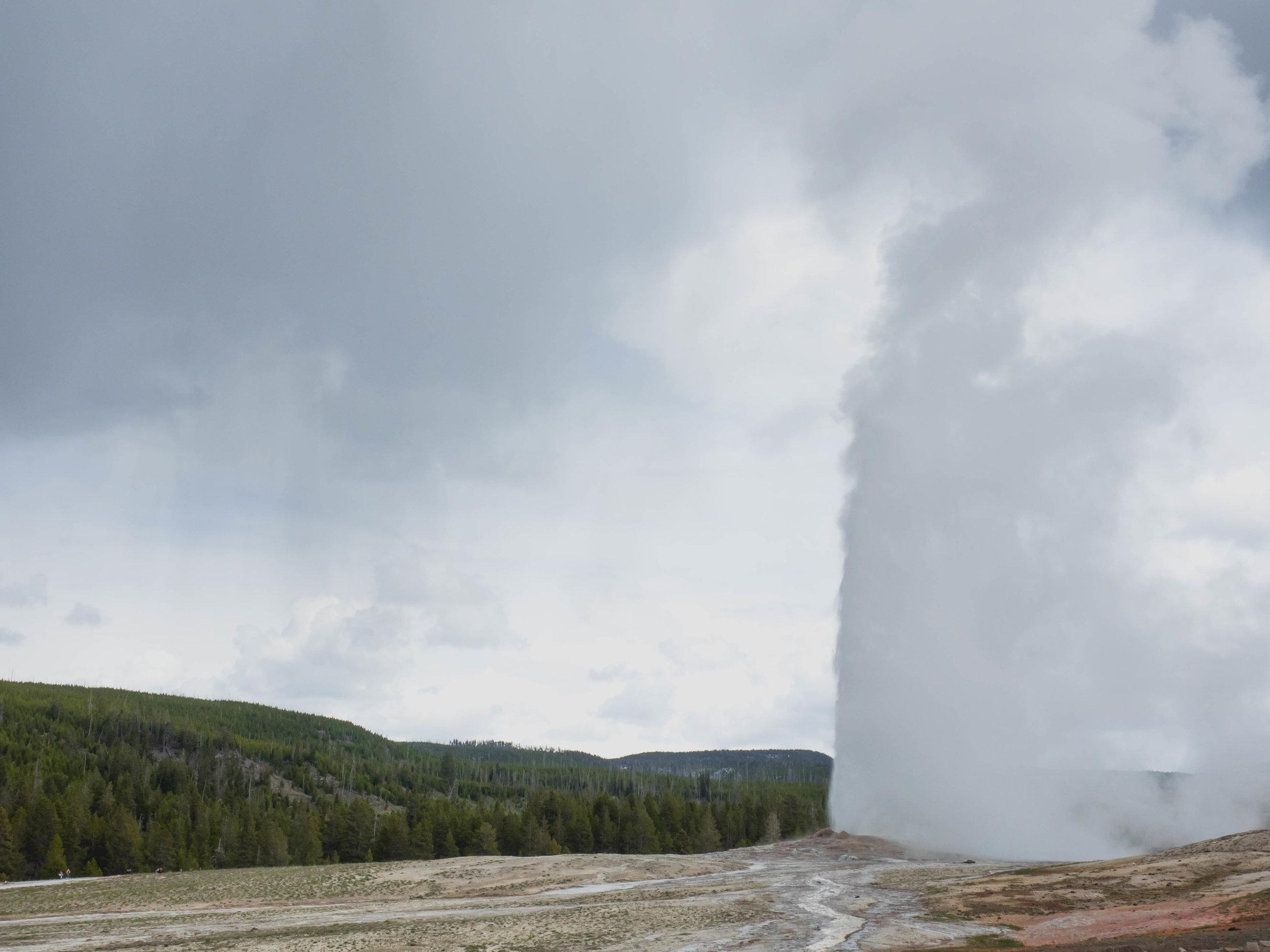 old faithful geyser.