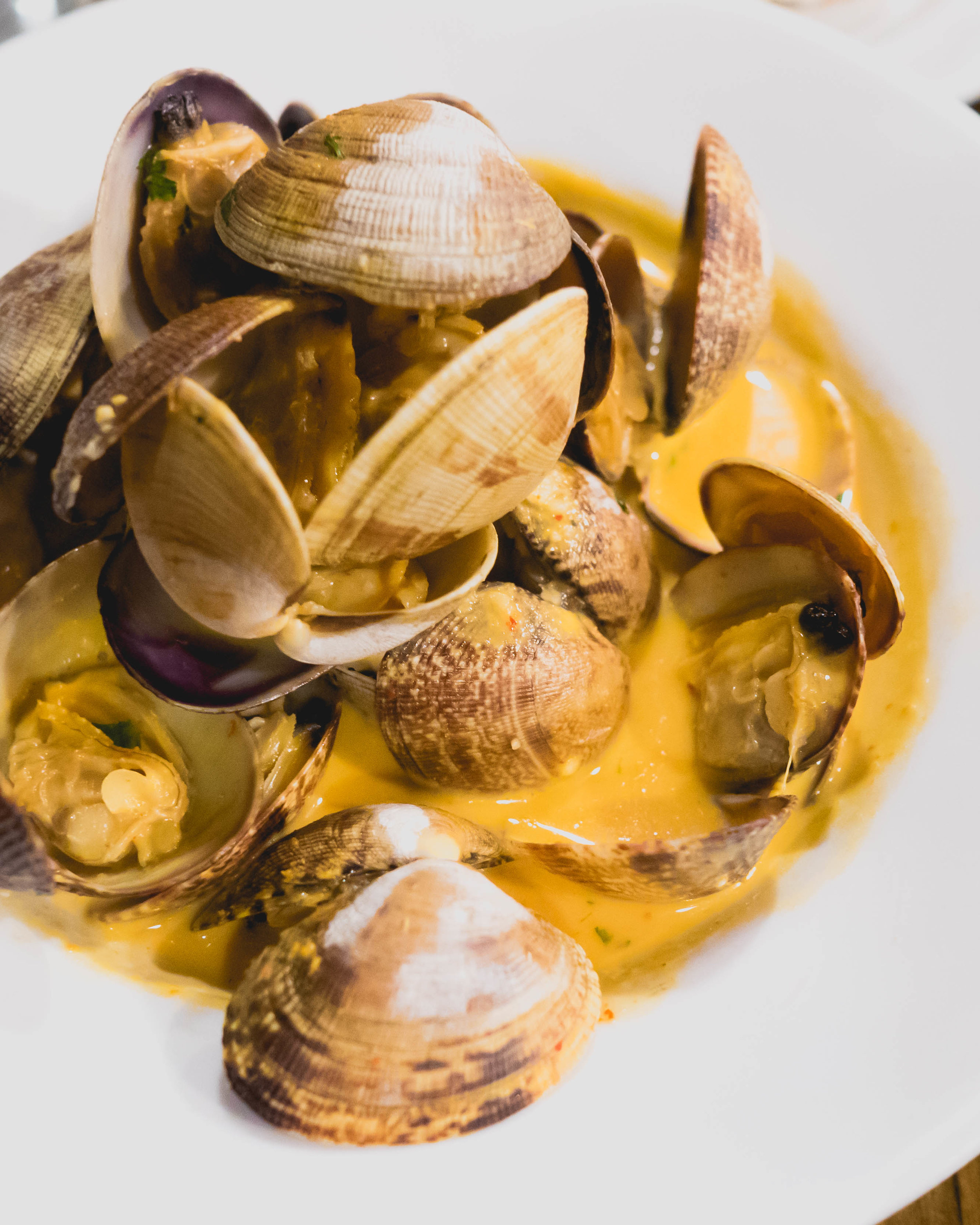 curry clams : manila clams, curry coconut broth, basil, cilantro, grilled garlic bread (not pictured).
