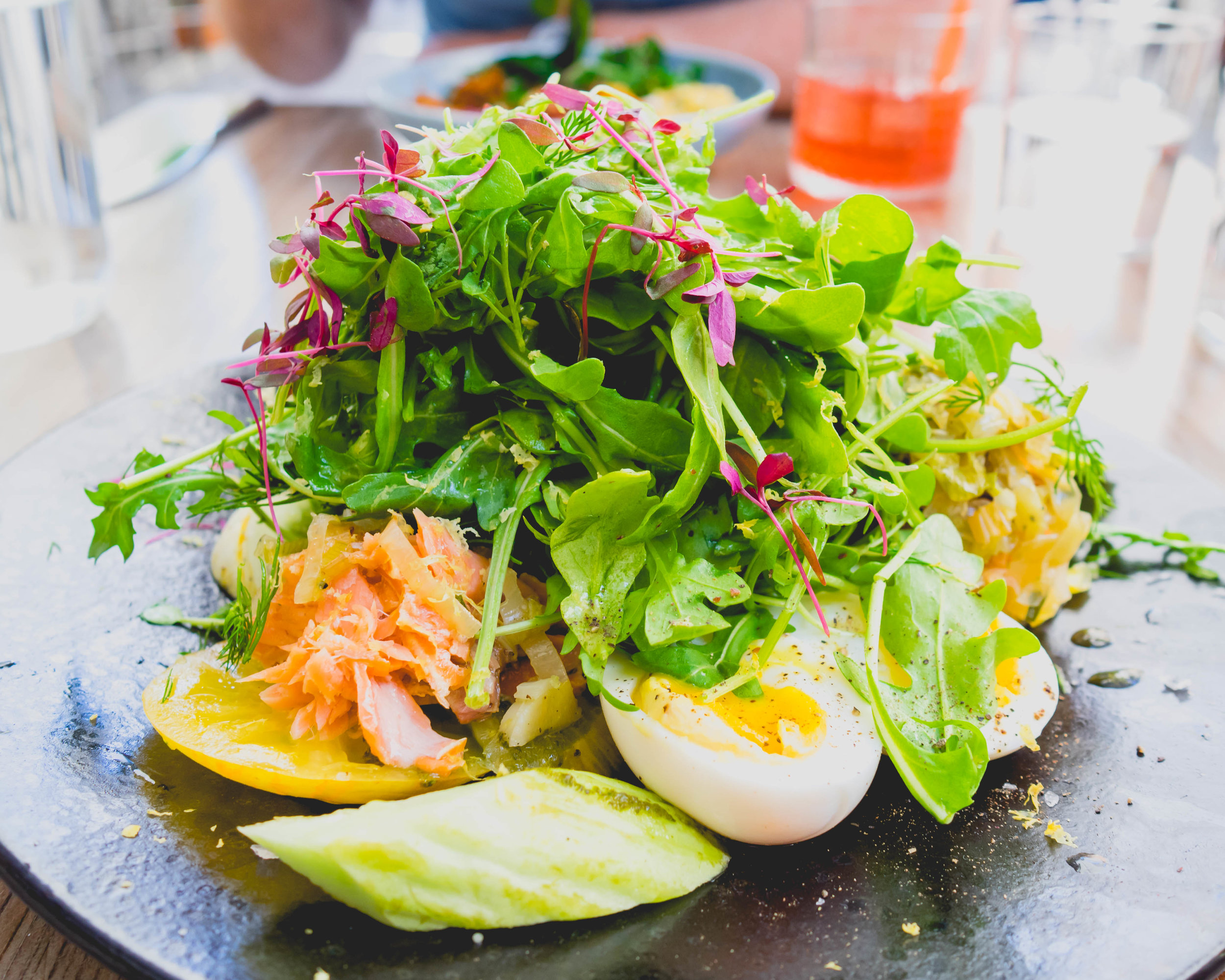 hot smoked king salmon : house smoked wild pacific salmon, heirloom tomatoes & cukes, melted alliums, arugula, herbs & a 6 minute farm egg.