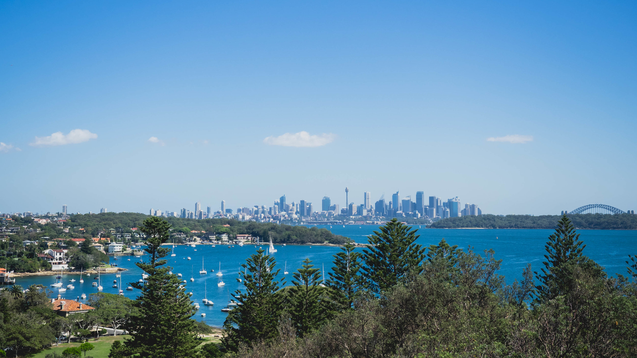 view of they city from watson's bay.