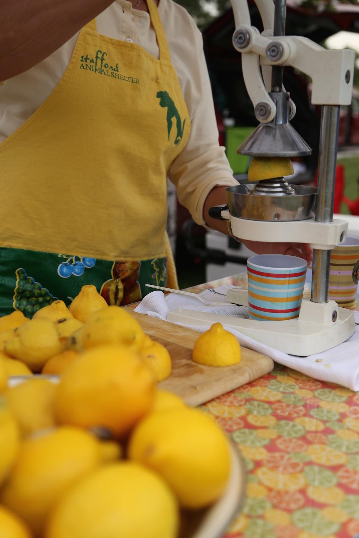 tafford's-lemonade-stand-lfm14.jpg