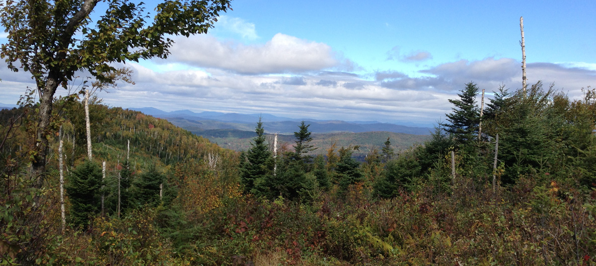Stunning views await you in the Cooley-Jericho Community Forest.