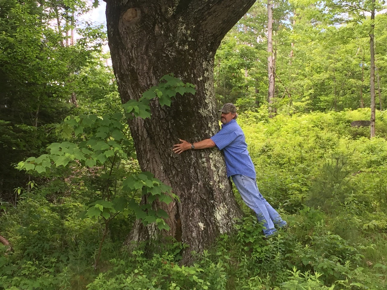 Landowner Jim Pasman wraps his arms around the red oak tree that is his farm's namesake.