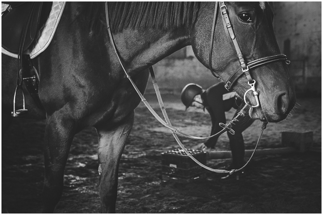 A documentary session featuring a girl, her brown horse and a red barn.  #equine #equestrian #horse #fraservalleyhorse #vancouverhorses #equestrianphotography #photography #racehorse #retiredhorse #jumping #riding #barn #documentary #yvr #vancouver #redbarn #brownhorse #sparklebridle #oldbarn #brownhorsewhitespot #realhorses #abbostford #abbotsfordriding #vancouverriding