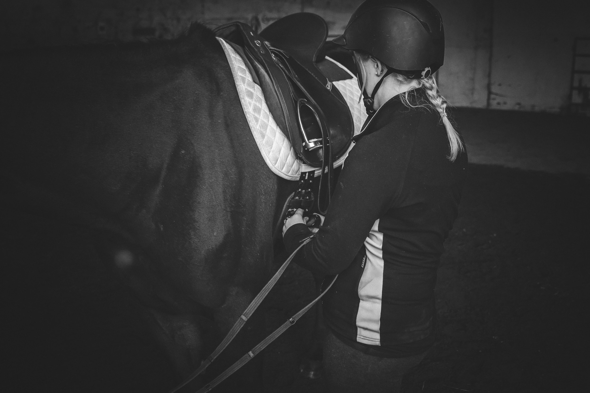 Fraser Valley Equestrian Photography