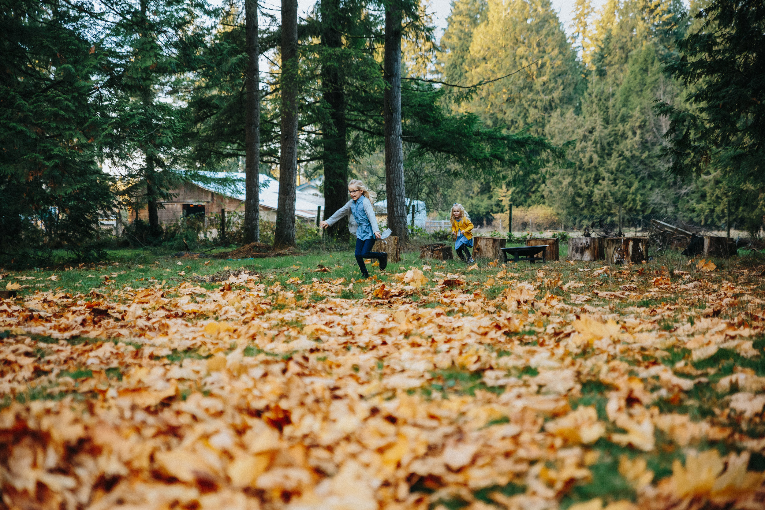 running through the leaves | mimsical photography